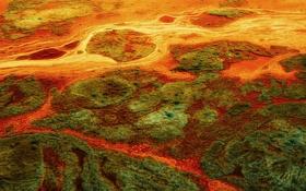 Обои водоросли, поток, выдержка, воды, лагуна, грязи, всплывающий мох