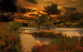 Картинка трава, деревья, закат, тучи, озеро, Природа