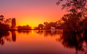 Картинка небо, деревья, закат, озеро, пруд, парк, фонтан