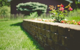 Картинка камни, декор, трава, двор, цветы