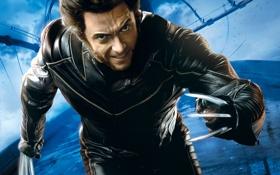 Обои злой, Росомаха, Логан, люди икс, Wolverine, Marvel, x-men