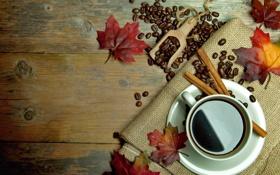Обои осень, листья, кофе, чашка, корица, autumn, leaves