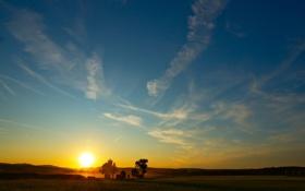 Картинка поле, небо, солнце, деревья, закат, восход