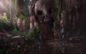 Обои цветы, пруд, скалы, череп, арт, пещера, мрачно