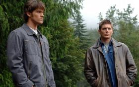 Картинка сериал, Supernatural, Jensen Ackles, Сверхъестественное, Dean Winchester, Джаред Падалеки, Sam Winchester