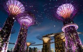 Обои ночь, дизайн, огни, Сингапур, строения, сады, Gardens by the Bay