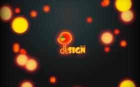 Обои дизайн, птица, Лучшие обои, Design