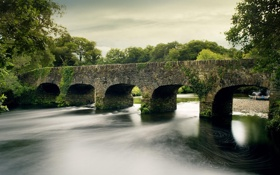Обои река, зелень, парк, деревья, мост