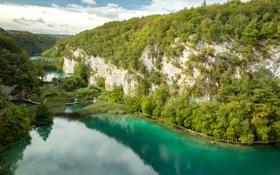 Обои Плитвицкие озера, лес, река, Хорватия, мост, скала