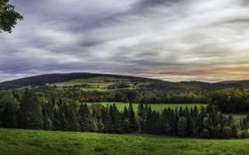 Обои леса, Канада, деревья, Quebec, луга, поля