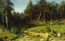 Обои лес, деревья, природа, ручей, камни, пень, арт