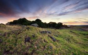 Обои трава, скалы, фото, холмы, природа, пейзажи, камни