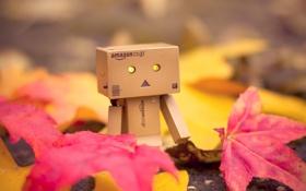 Обои листья, осень, Danbo, amazon, коробка, коробок