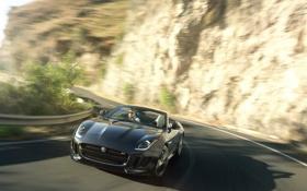 Обои дорога, движение, ягуар, jaguar, f-type