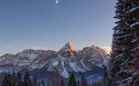 Картинка зима, лес, горы, снег, природа
