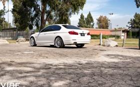 Обои motosport, BMW, Wheels, Vibe, корма, Auto, Авто