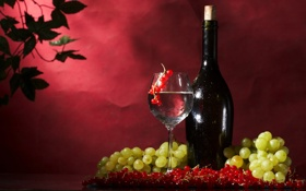Обои ягоды, вино, бокал, бутылка, виноград, красная, смородина
