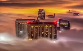 Картинка огни, здание, ночь, туман, небоскреб