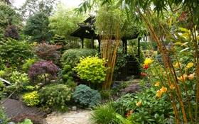 Обои сад, зелень, кусты, цветы, беседка