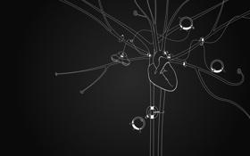 Картинка креатив, фон, чёрный, обои, сердце, минимализм, арт