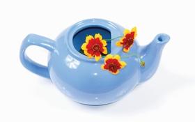 Картинка голубой, цветы, чайник
