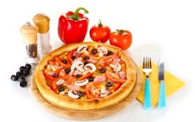 Картинка грибы, еда, нож, перец, помидоры, оливки, специи