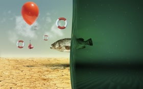 Обои креатив, зелёный, рыба