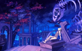 Картинка небо, звезды, цветы, ночь, аниме, арт, скелет