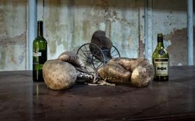 Картинка спорт, бокс, перчатки, бутылки