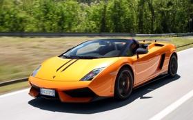 Обои дорога, скорость, Lamborghini, суперкар, Gallardo, Spyder, красивый