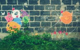 Обои трава, цвета, цветы, стена, граффити, голубь, кусты