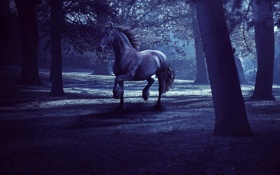 Картинка лес, деревья, ночь, темнота, рендеринг, конь, лошадь