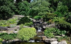 Обои природа, пруд, парк, ручей, камни, фото, Нью-Йорк