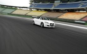 Обои Audi, Ауди, Белый, Машина, Трасса, ABT, В Движении