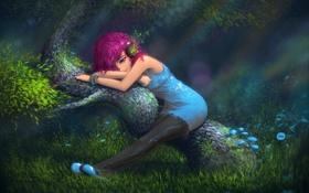 Картинка лес, свет, блики, дерево, Девушка, растения