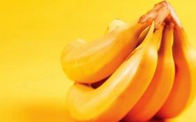Обои еда, бананы, фрукты