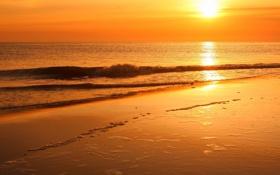 Картинка песок, море, волны, пена, солнце, лучи, свет