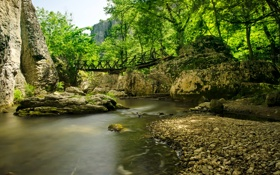 Картинка лес, деревья, горы, мост, камни, скалы, речка