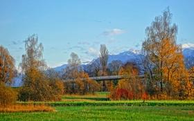 Картинка осень, трава, снег, деревья, горы, мост