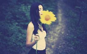 Картинка цветок, девушка, цветы, желтый, фон, обои, настроения