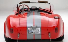 Обои фото, тачки, shelby, cars, шелби, auto wallpapers, авто обои