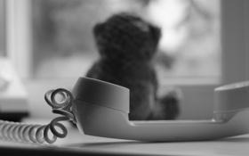 Картинка окно, мишка, телефон