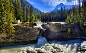 Картинка лес, пейзаж, горы, природа, река, скалы, водопад