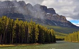 Обои лес, солнце, деревья, горы, тучи, река, скалы