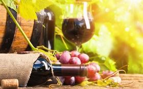 Картинка вино, бокал, бутылка, виноград, бочка