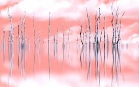 Обои пейзаж, фон, деревья, цвет