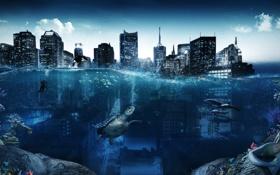 Картинка город, креатив, здания, русалка, водолаз, черепаха, кораллы
