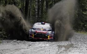 Картинка Спорт, Машина, Скорость, Гонка, Citroen, Red Bull, Rally