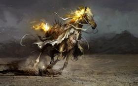 Картинка конь, арт, слава, Thedurrrrian