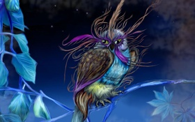 Картинка ночь, птица, ветка